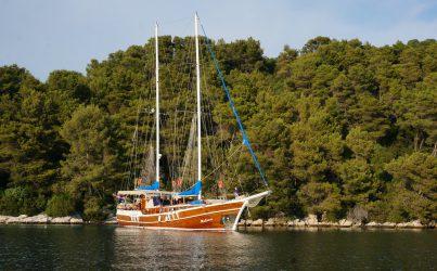 Gulet MALENA available in Croatia.